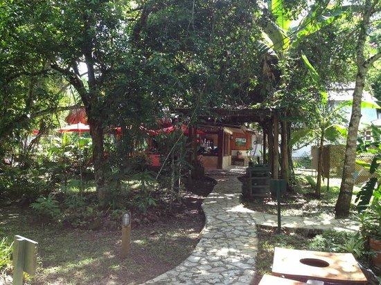 Hotel Jaguar Inn Tikal: The main building - check-in, gift shop, and restaurant