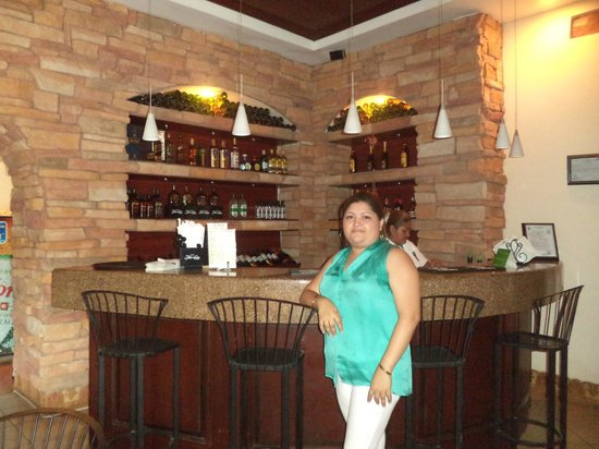 Hotel Plaza Colon: bar