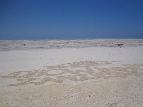 Dhow Inn: Beach
