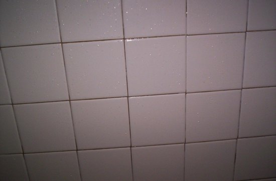Fairfield Inn & Suites Macon: Mold on bathroom tile! GROSS!!