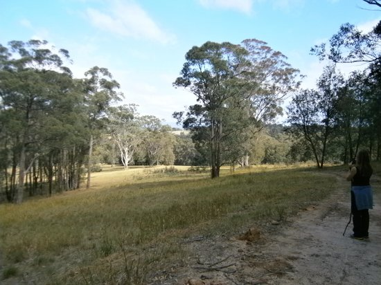 The Hunter Valley Retreat: from the top of hunter valley retread