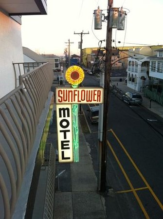 Sunflower Motel: Best motel in Wildwood