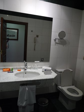 NH Granada Centro: バスルーム