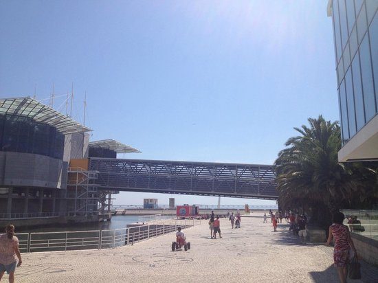 Lisbon Oceanarium: Oceanário