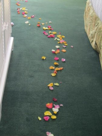 SeaVenture Beach Hotel: Rose petals on ground.