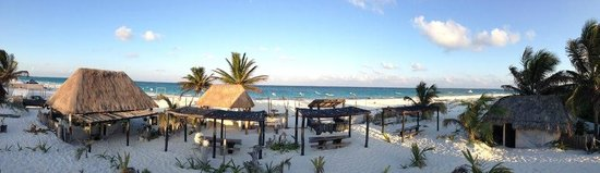 Bar Adelita: Playa Adelita