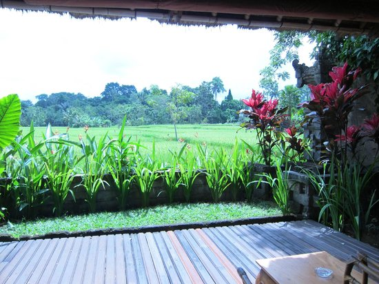 Tegal Sari : View from Deluxe Room (#17)