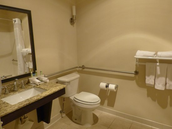 Holiday Inn Express Lewiston: Bathroom