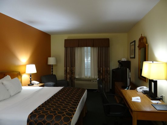 BEST WESTERN Mason Inn : Inside the room