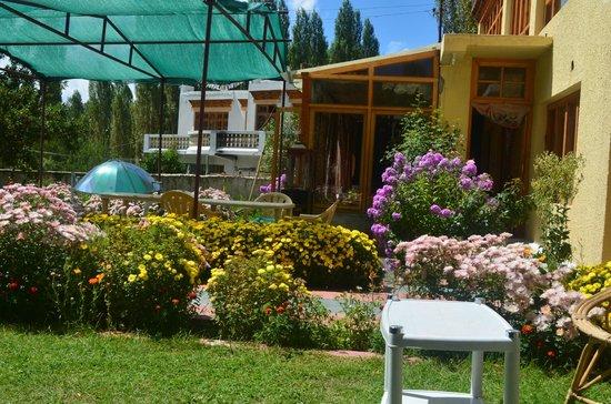 Garden Sit Out Picture Of Hotel Naro Leh Tripadvisor
