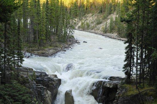 Sunwapta Falls Rocky Mountain Lodge: Sunwapta Falls