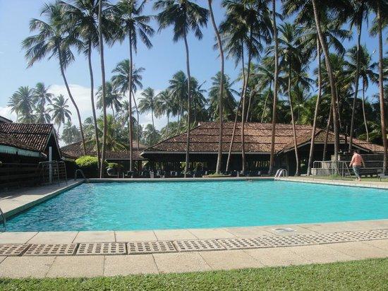 Club Bentota : Pool