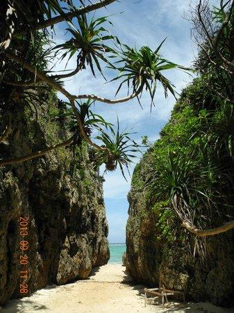 Cape Bisezaki : sinnseinabasyo