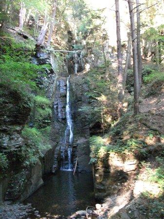 Dingmans Falls: Dingman's Falls