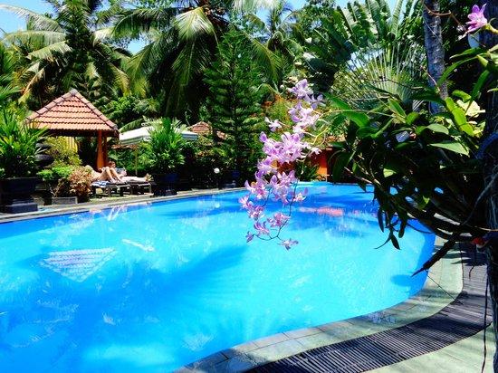 Flower Garden Hotel : l'hôtel porte bien son nom