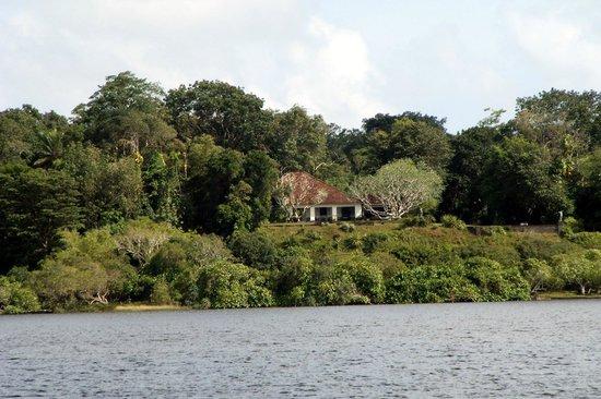بينتوتا, سريلانكا: Looking towards the property