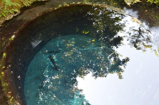 Kakitagawa Park: 第二展望台付近の湧き水