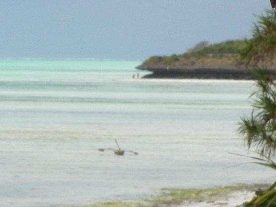 La Papaye Verte : lagon vu du jardin