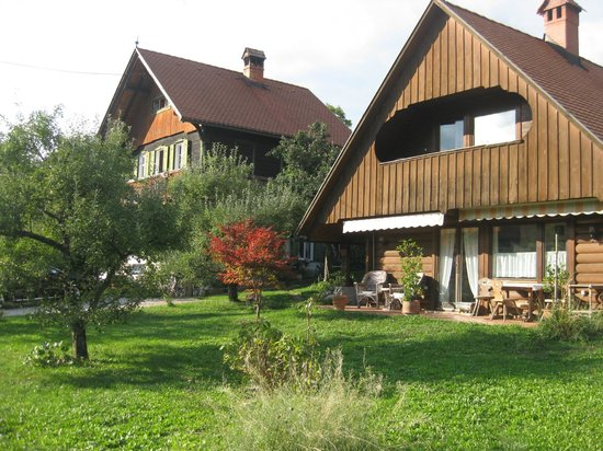 Bajtica Guesthouse: Bajtica and its apple orchard