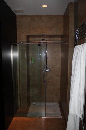 Adealba Hotel: ducha dentro del msimo baño