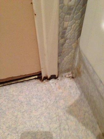 Hotel Tonic : salle de bain