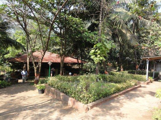 Lotus Beach Resort: reception