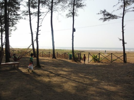 Lotus Beach Resort: view from common area