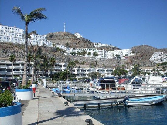 Colina Mar Apartments: harbour