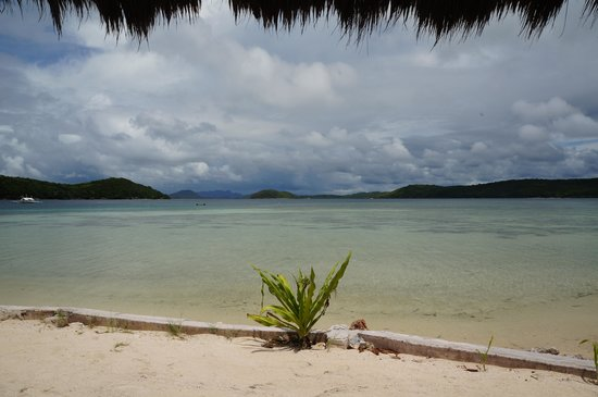 Coral Bay Beach & Dive Resort: The Veiw
