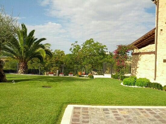 La Tana dei Leoni B&B: il giardino curatissimo