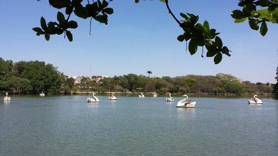 Parque Portugal: Lago