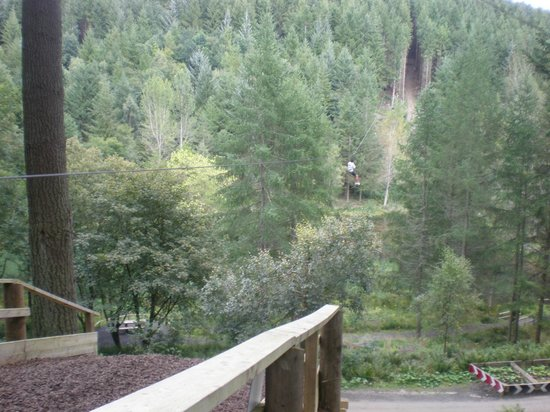 Go Ape at Peebles, Glentress: Zip line