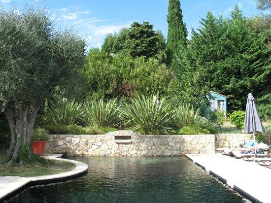 Hotel du Clos: piscine