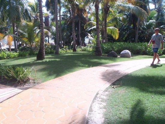 Catalonia Bavaro Beach Golf Resort Jardins De Acesso á Praia Piscina