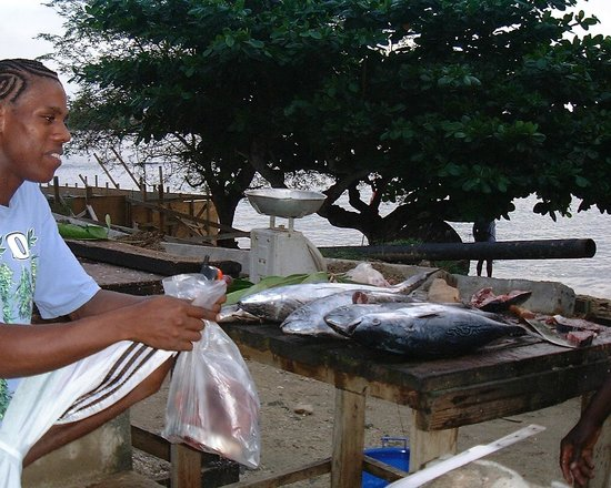 Jemas Guesthouse and Apartments : Fresh Fish!