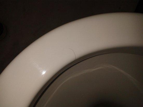 Palazzo Marziale : hair on toilet seat