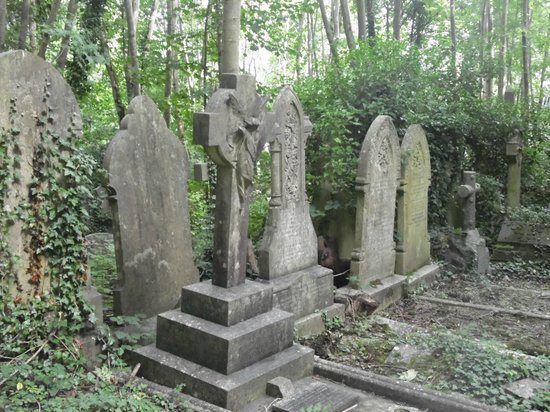 Arnos Vale Cemetery: In the woods