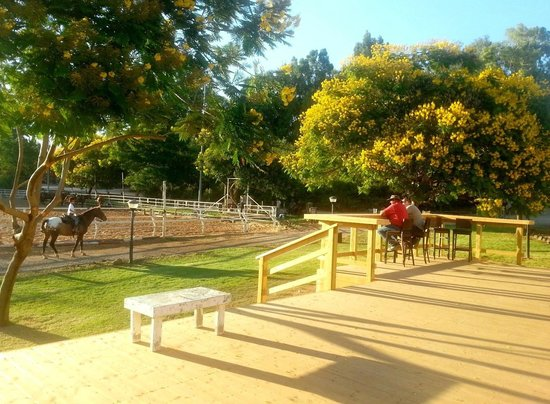 Vered Hagalil Holiday Village Hotel: Tibis- deck overlooking the riding grounds
