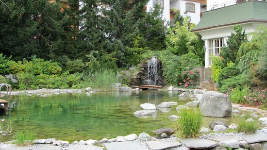 Hotel Salzburgerhof: The garden pool