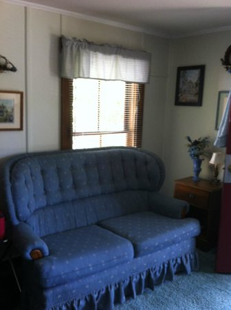 Carroll Motel & Cottages: Couch