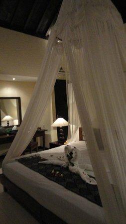 Bhanuswari Resort & Spa: superior room
