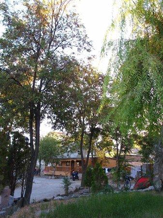 Dilek Camping : Camp area (from the green side)