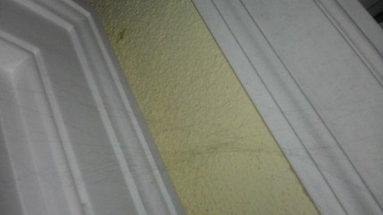 Relais Regina Giovanna: cobweb in a corner