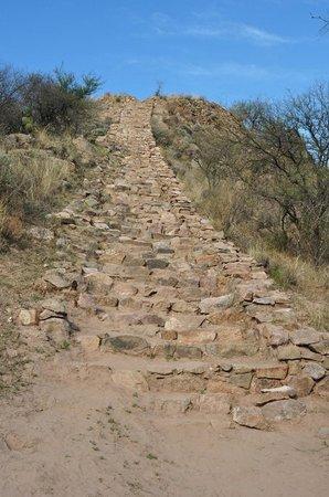 Ruinas de El Shincal: Stairway