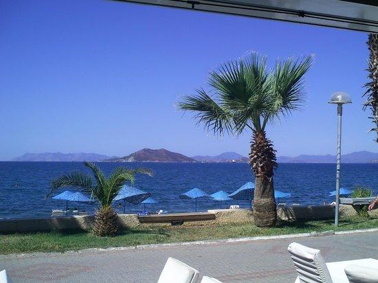 Delta Hotel: sea view