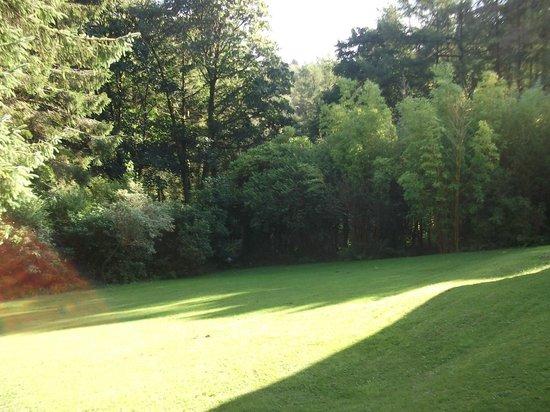 Cwmwennol Country House: rear garden