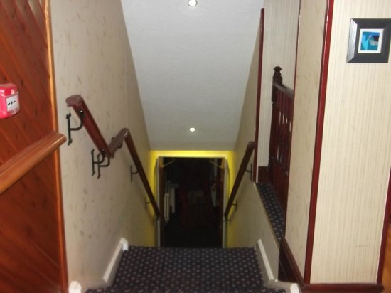 Cwmwennol Country House: staircase to bar and dinning room