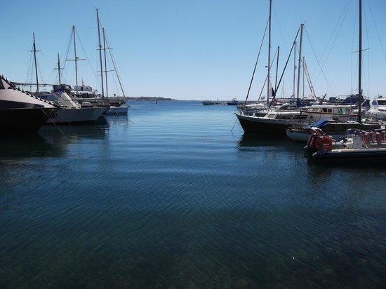 Avanti Village : Paphos Port