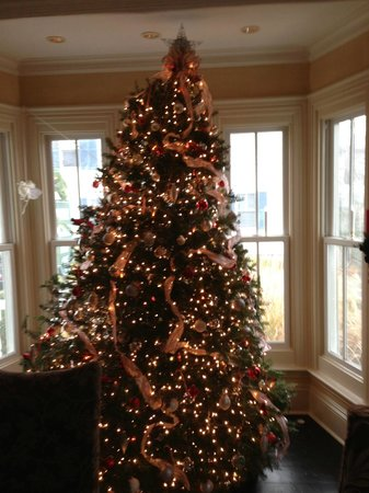 White Porch Inn: Christmas Tree in front window