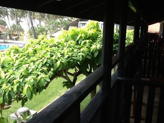 AVANI Bentota Resort & Spa: Add a caption